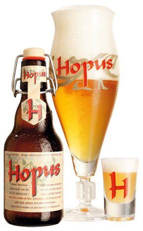 Hopus 20x33cl Image