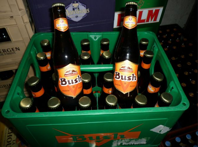 Bush Beer Ambrée 24x33cl Image